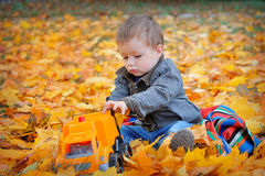 Boy playing machine in yellow autumn leaves Stock Photos