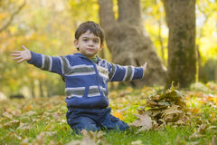 Boy playing in the park Royalty Free Stock Images