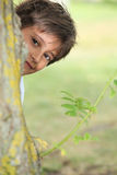 Boy playing peek a boo. Young boy playing peek a boo around a tree royalty free stock images
