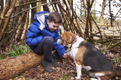 Boy playing with pet dog under a shelter of tree branches Stock Photos