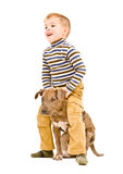 Boy playing with a puppy Stock Photos