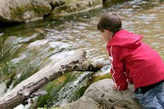 Boy playing in the river royalty free stock images