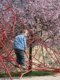 Boy playing on rope playground Stock Photo