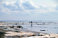 Boy is playing on the sea coast line, pitching stones and ice in the water. Ice breakup. Stock Photo