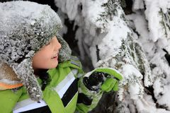 Boy playing in snow Royalty Free Stock Photos