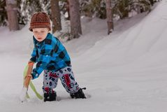 Boy playing in the snow Stock Photography