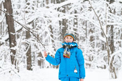 Boy playing with snow in a winter park Royalty Free Stock Photography