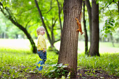 Boy playing with squirrel Stock Photos