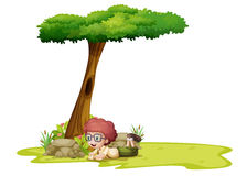 A boy playing under the tree Stock Image