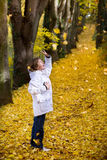 Boy playing with yellow autumn leaves. In a park Royalty Free Stock Photography