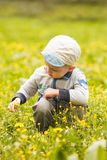 Boy plays with flowers Stock Images