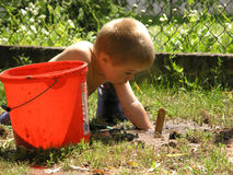 Boy plays in the garden. Boy plays with tools in the garden royalty free stock photo