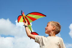 Boy plays kite against sky Royalty Free Stock Photography