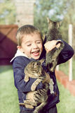 Boy plays with kittens. In the garden Stock Photo