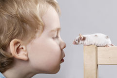 Boy plays with mouse Stock Photography