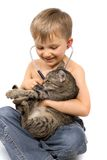 Boy Plays Veterinarian with Cat Royalty Free Stock Images