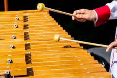 The boy plays the xylophone during the concert_ royalty free stock images
