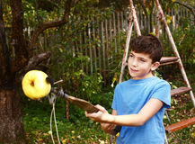 Boy pluck ripe apples from the tree with special device Royalty Free Stock Images