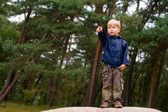 Boy Pointing the Finger Royalty Free Stock Image
