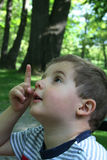 Boy pointing up. Small boy in a forest pointing up Stock Photography
