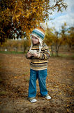 Boy in pomegranate grove Royalty Free Stock Photo