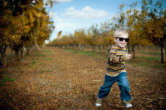 Boy in pomegranate grove Royalty Free Stock Photography