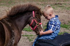 Boy and pony head to head. A young boy and his small pony sit head to head as they share a moment of love and companionship Stock Photo