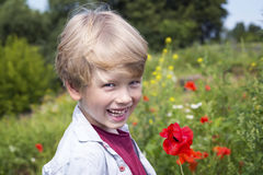 Boy in a poppy field, springtime Royalty Free Stock Photo