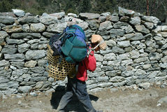 Boy-porter in Nepal. Boy-porter carries tourist load on the way to Everest base camp Stock Image