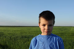 Boy portrait in field of green grain Stock Photos