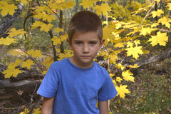 Boy portrait with forest. Game leisure activity autumn Stock Photo