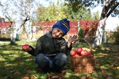 Boy posing outdoors with apples Royalty Free Stock Photography