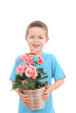 Boy with potted flower stock image