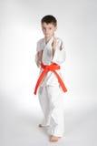 Boy practice karate Stock Image