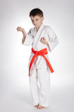 Boy practice karate Royalty Free Stock Image