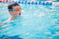 Boy Practice Swimming. And swimming Freestyle in the pool Royalty Free Stock Photo