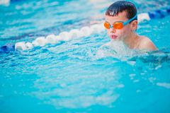 Boy Practice Swimming. And swimming Freestyle in the pool Royalty Free Stock Photos