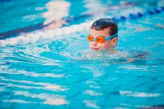 Boy Practice Swimming. And swimming Freestyle in the pool Stock Images