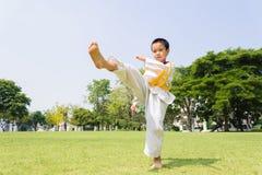 Boy practice taekwondo Royalty Free Stock Images