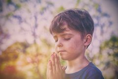 Boy praying with eyes closed. Close-up of boy praying with eyes closed in park royalty free stock images