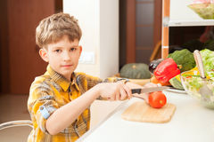 Boy preparing salad Royalty Free Stock Photography