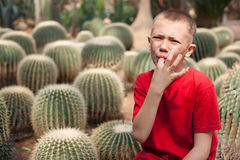 Boy pricked his finger on a cactus needles. Royalty Free Stock Photos