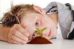 Boy protecting a small plant in soil Royalty Free Stock Photo