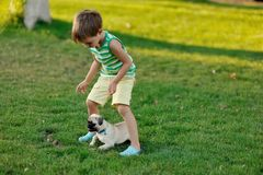 Boy and pug Royalty Free Stock Photo