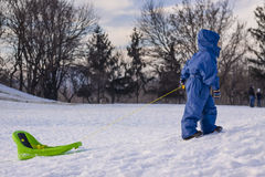 Boy pulling a sledge on snow Stock Image