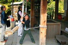 Boy pulls rope to ring a bell at Kinkakuji temple. KYOTO:APR 16- Unidentified boy pulls a rope to ring a bell at Kinkakuji Temple on April 16, 2011 in Kyoto Royalty Free Stock Photo