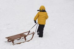 A boy pulls sled in the snow in the park royalty free stock photo