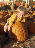 Boy pumpkin Stock Photography