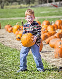 Boy with pumpkin Stock Image