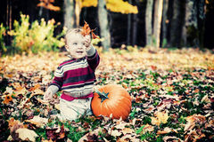 Boy Beside Pumpkin Holding Up Leaves - Vintage stock images